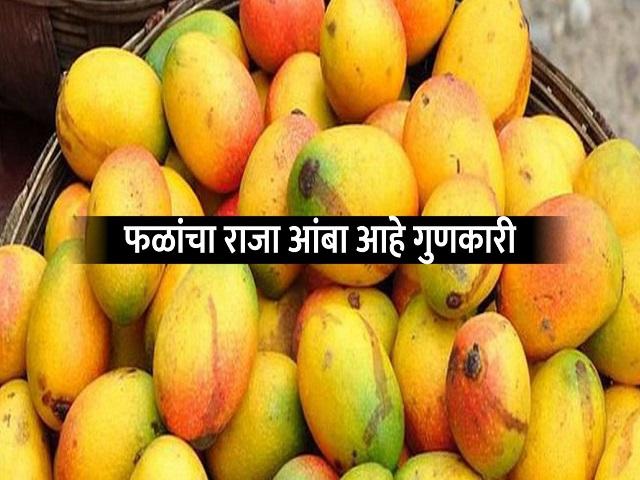 चटपटीत आंबा पोळी खाऊन वाढवा स्मरणशक्ती अन् रोगप्रतिकारकशक्ती