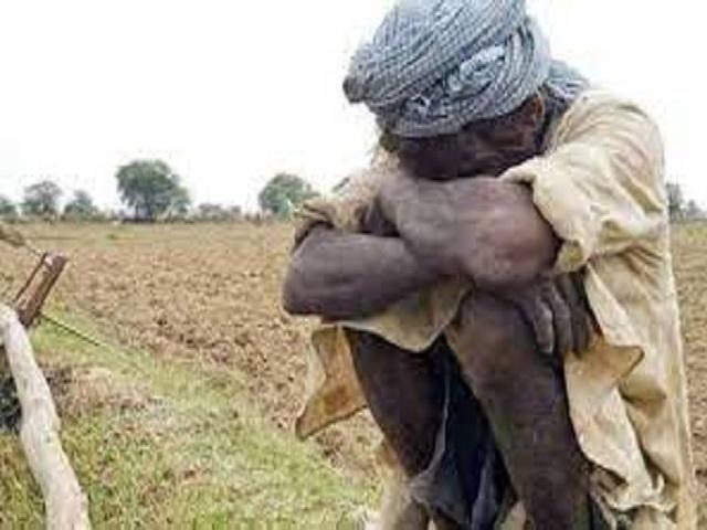 माझं मत - 'शेतकरी श्रीमंत का होत नाही? दुर्बलता काय...?