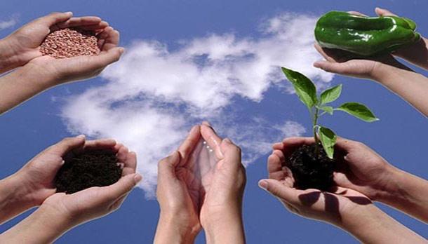 कृषी शिक्षण आणि संधी