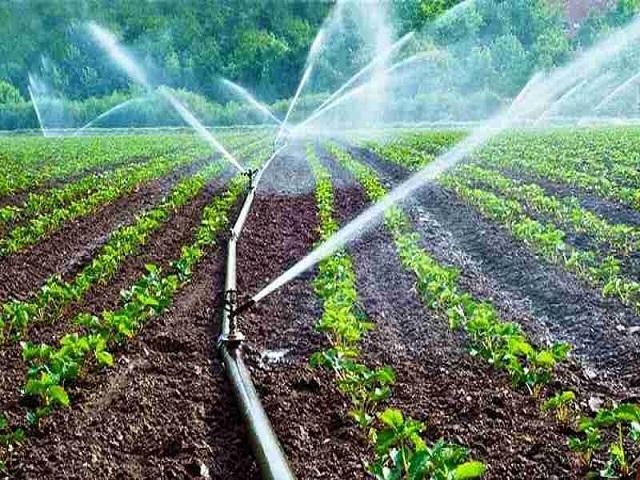 पंतप्रधान कृषी सिंचन योजना : शेतकर्यांना कसा मिळतो लाभ,  अनुदानबाबत काय आहेत नियम?