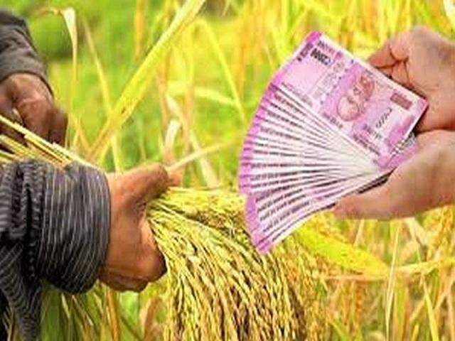 'पात्र शेतकऱ्यांना एवढ्यात कर्जमाफीचा लाभ नाही' राष्ट्रवादीच्या मंत्र्याचे विधान