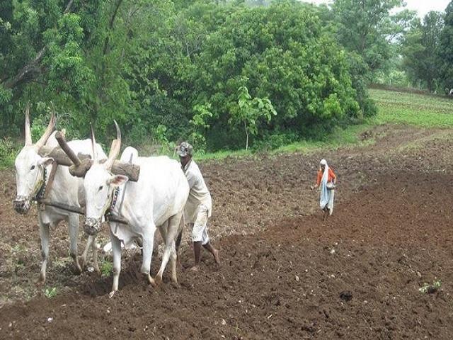 हरियाणा सरकारची जबरदस्त योजना, सरकारकडून शेतकऱ्यांना 7000 रुपयांची आर्थिक