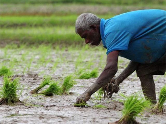 जून अखेरपर्यंत पीएम किसान योजनेत नाव नोंदवल्यास मिळतील 4000 रुपये