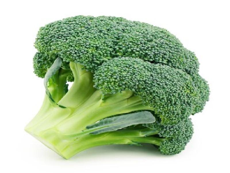brocoli cultivation