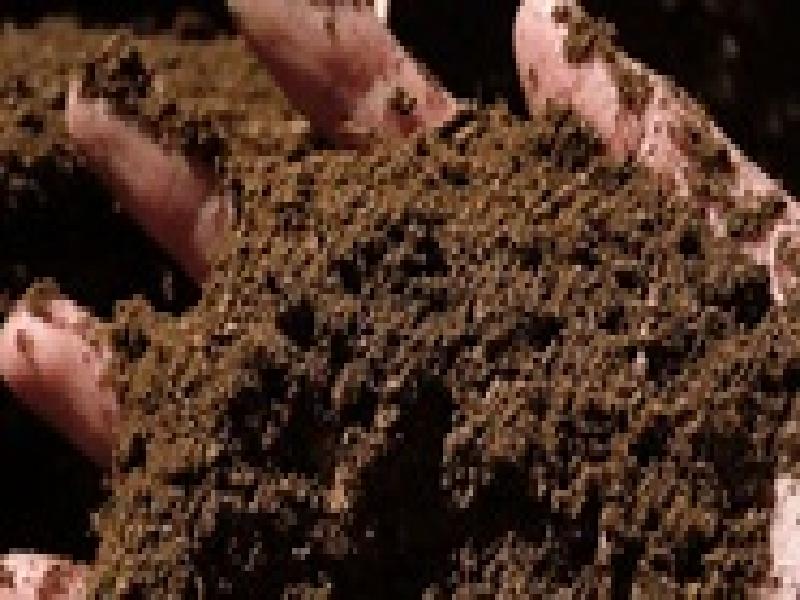 सेंद्रिय कर्ब किती असावा ? जमिनीतील सेंद्रिय कर्ब कसा वाढवावा ?