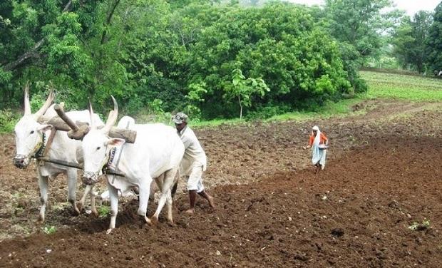 30 जूनपर्यंत सर्व शेतकऱ्यांचे कर्ज माफ झाले पाहिजे