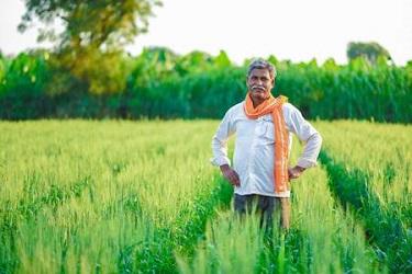 डॉ. बाबासाहेब आंबेडकर कृषी स्वावलंबन योजनेने उंचवा आपले जीवनमान