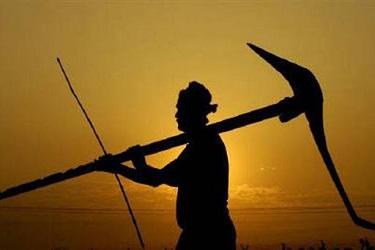 पंतप्रधान किसान योजना :   ७ हजार ३८४ कोटी रुपये शेतकऱ्यांच्या खात्यात जमा - केंद्र