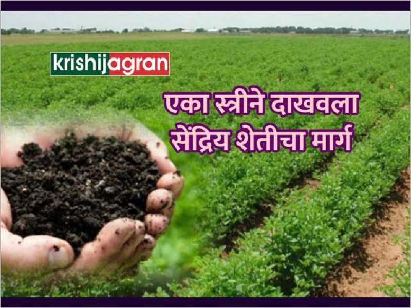महिलेने दाखवला सेंद्रिय शेतीचा मार्ग;  आता होतोय  तीन हजार शेतकऱ्यांना  फायदा
