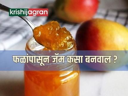 विविध फळांपासून बनवा आरोग्यवर्धक जॅम