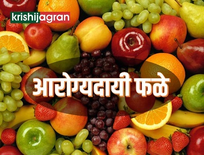 आरोग्यदायी फळे व त्यांचे औषधी गुणधर्म