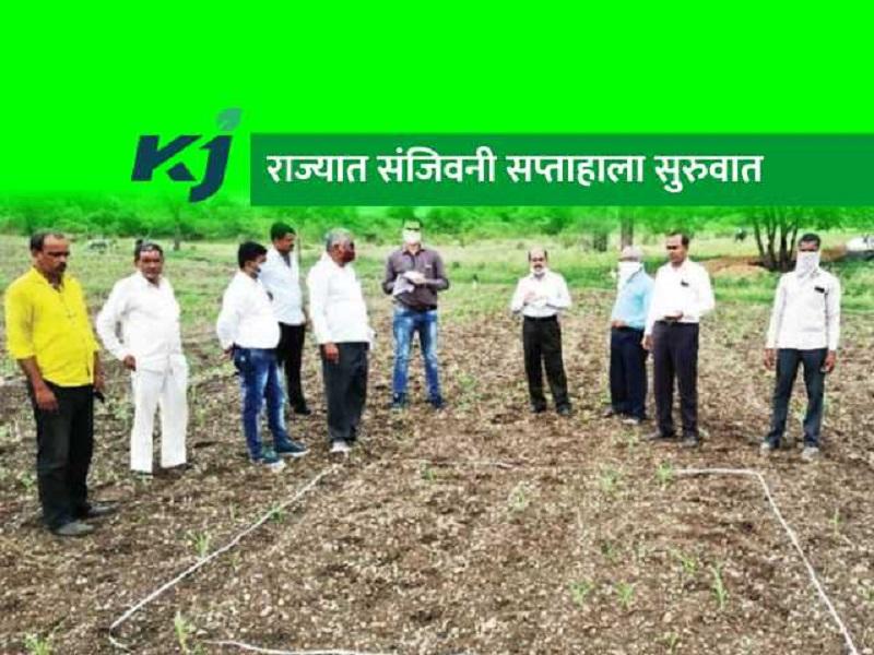 राज्यात सुरू आहे कृषी संजीवनी सप्ताह;  शेतकऱ्यांना मिळणार तंत्रज्ञानाची माहिती