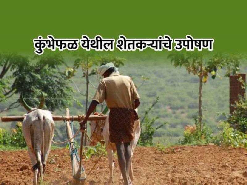 शेतकऱ्यांना कोरडवाहू क्षेत्रविकास योजनेचा पैसाच मिळेना