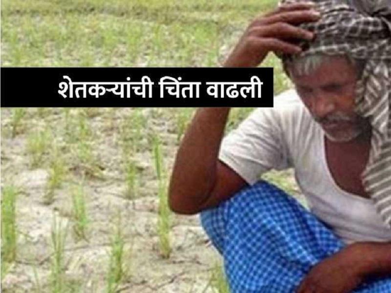 शेतकऱ्यांपुढे नवं संकट;  राज्यात खतांची टंचाई