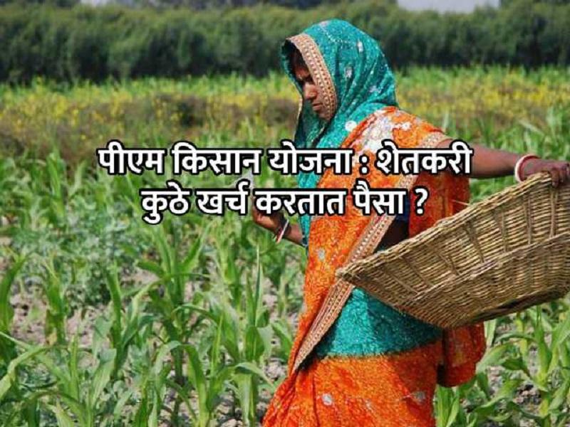 पीएम किसान योजनेचा पैसा शेतकऱ्यांनी कुठे वापरला?   सर्व्हेतून झाला मोठा  खुलासा