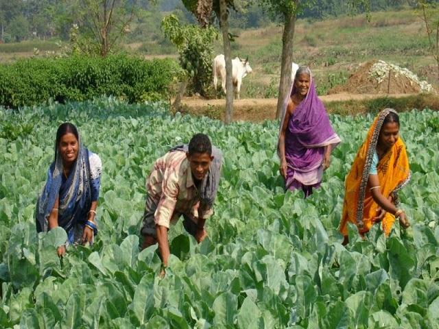Smart Farmers Scheme