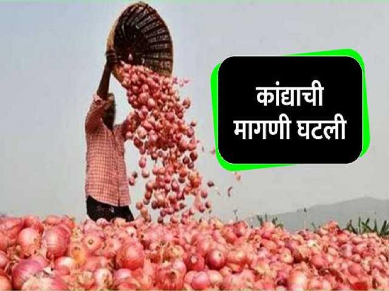 कांदा उत्पादक शेतकरी संकटात ; कांद्याच्या दरात घसरण