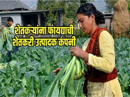 जाणून घ्या !  शेतकरी उत्पादक कंपनी कशी स्थापन करायची ?  काय आहेत याचे फायदे