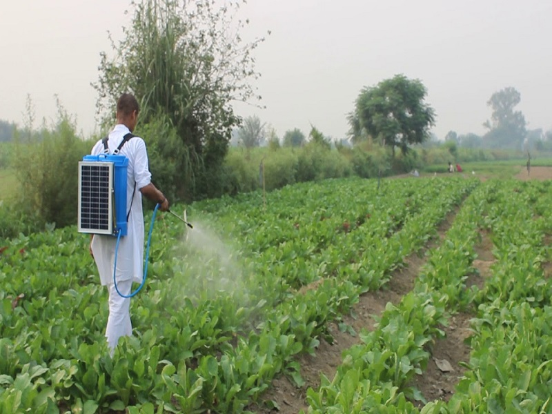 छोट्या शेतकऱ्यांना फायदेशीर ठरेल सोलर स्प्रेअर