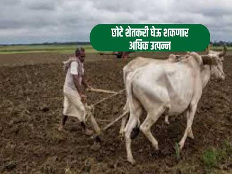 छोट्या शेतकऱ्यांसाठी खुशखबर; भाड्याने मिळणार कृषी अवजारे