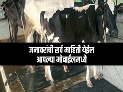 पशु बद्दलची सर्व माहिती मिळेल  e- Gopala  APP वर ;  जाणून घ्या  App चे फिचर्स