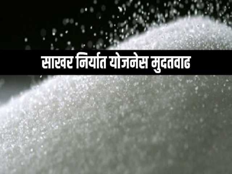 साखर निर्यात योजनेस केंद्राकडून  डिसेंबरपर्यंत मुदतवाढ