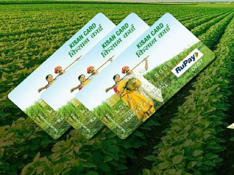 पीएम किसान योजनेच्या लाभार्थींना लगेच मिळेल केसीसी;  कार्डसह मिळेल 'या'  गोष्टींचा लाभ