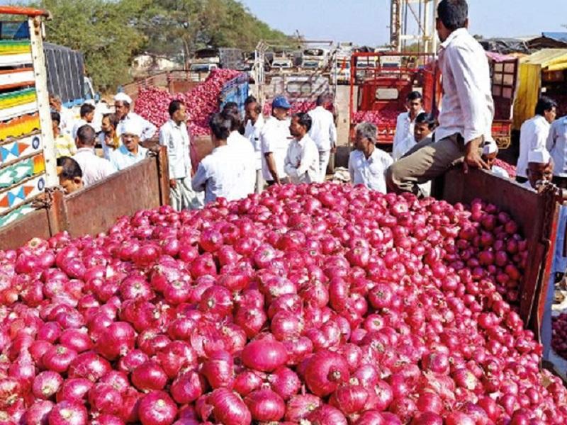 अजून कांदा दर वाढण्याची शक्यता;  गोदामातील २५ हजार टन कांदा झाला खराब