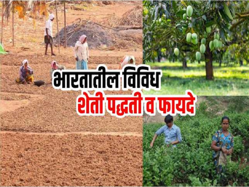 भारतात होते विविध प्रकारची शेती ;  जाणून घ्या!  काय आहेत फायदे
