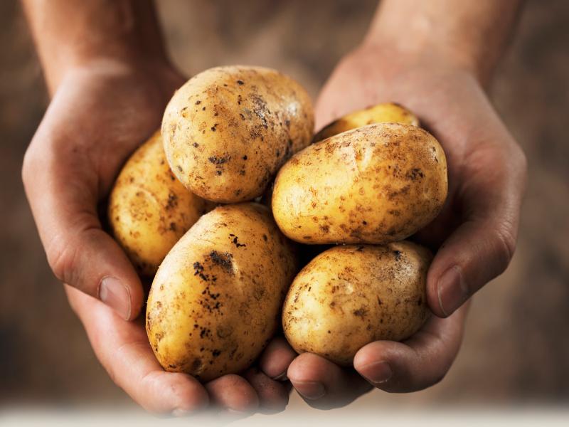 बटाट्याचे दर प्रतिकिलो 50 रुपयांच्या पुढे गेले, जाणून घ्या आता काय  स्वस्त होईल