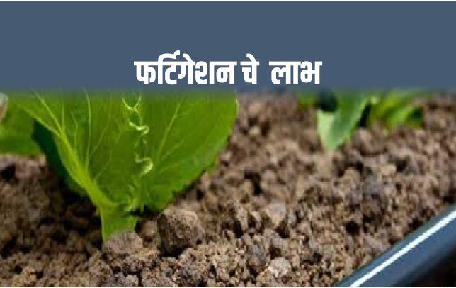 फर्टिगेशन : वाटचाल आधुनिक शेतीकडे...