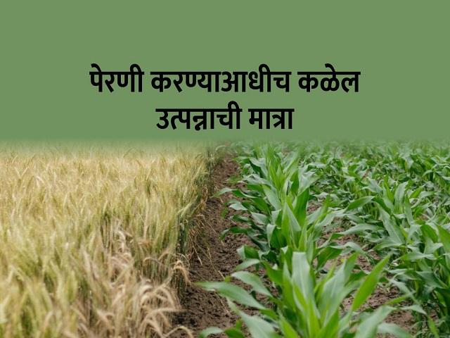 शेतकऱ्यांसाठी आनंदाची बातमी ! आता बियाणे पाहूनच कळेल किती होणार उत्पन्न