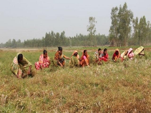 पीएम किसान - राज्यात  पुणे आणि अहमदनगरने पटकावला  पहिला क्रमांक