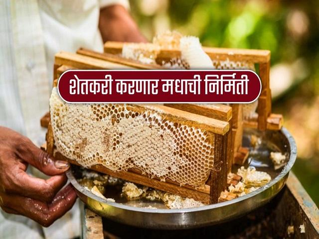 महाराष्ट्र राज्य खादी व ग्रामोद्योग मंडळ चालवणार मध केंद्र योजना