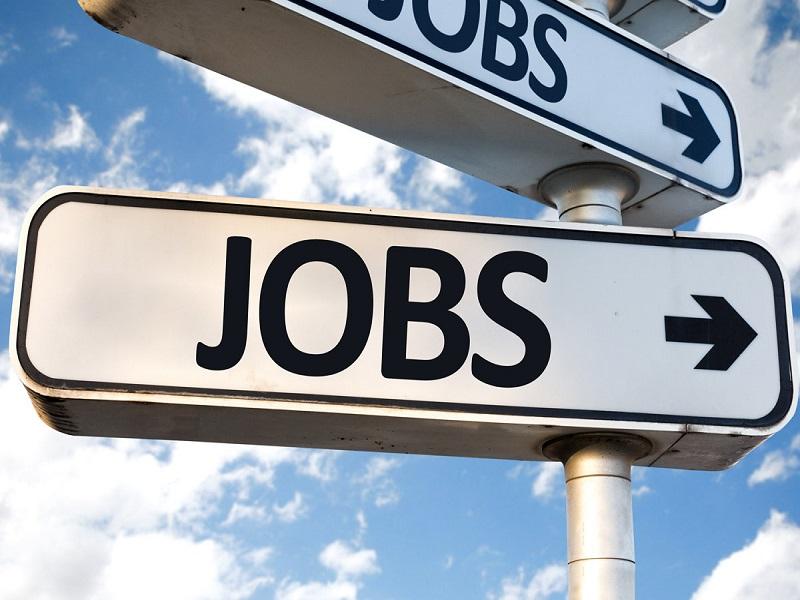 इलेक्ट्रिनिक्स कॉर्पोरेशन ऑफ इंडिया मध्ये नोकरीची संधी