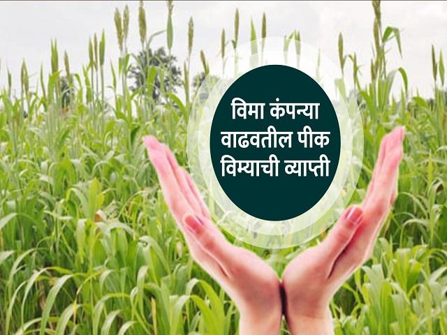 शेतकऱ्यांना जलद मिळेल पीक विमा; IRDAI  ने दिले निर्देश