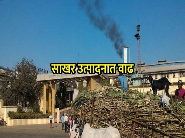 देशातील साखर उत्पादनात ४० लाख टनांनी वाढ; महाराष्ट्राचा सर्वाधिक वाटा