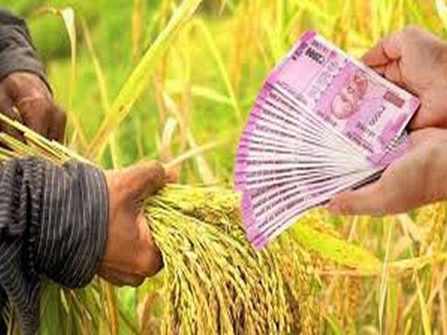 शेतकऱ्यांना कमी व्याजदरात मिळेल कर्ज; ३१ मार्चअखेर पर्यंत करावे लागेल 'हे' काम