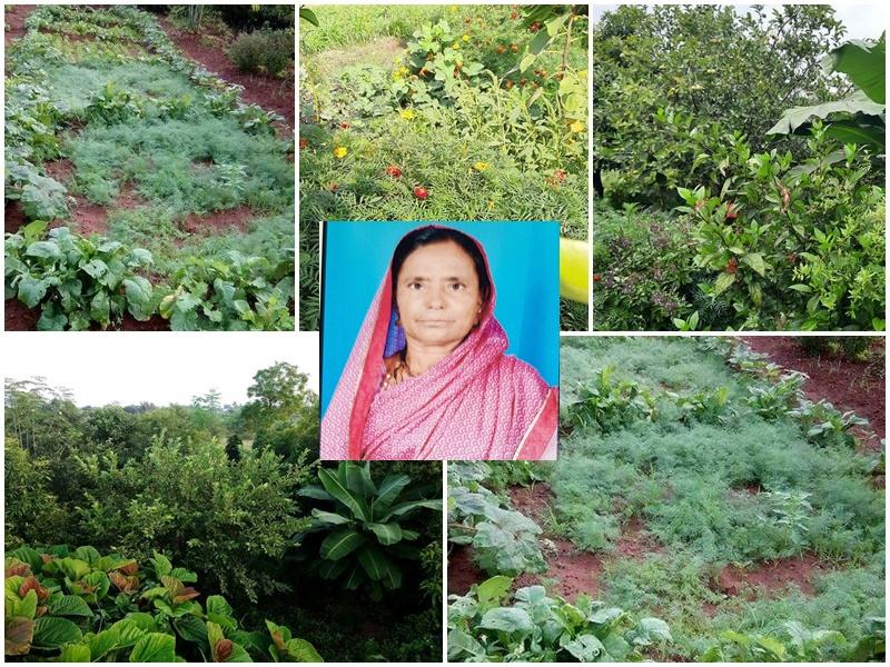 कुटुंब गरज आधारित  शेती (मनीषा भांगे )