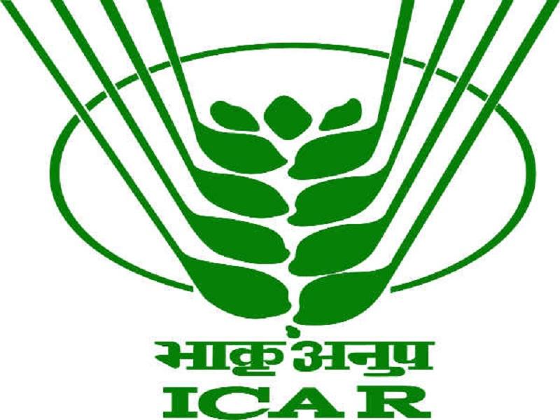 भारतीय कृषी संशोधन परिषदेत ३ हजार ८१५  पदे रिक्त