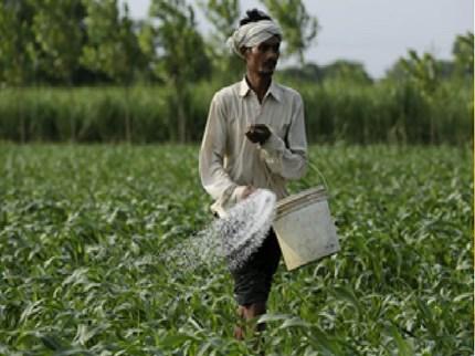 खूशखबर ! बाळासाहेब ठाकरे कृषी व्यवसाय व ग्रामीण परिवर्तन प्रकल्पासाठी 10 कोटींचा निधी मंजूर