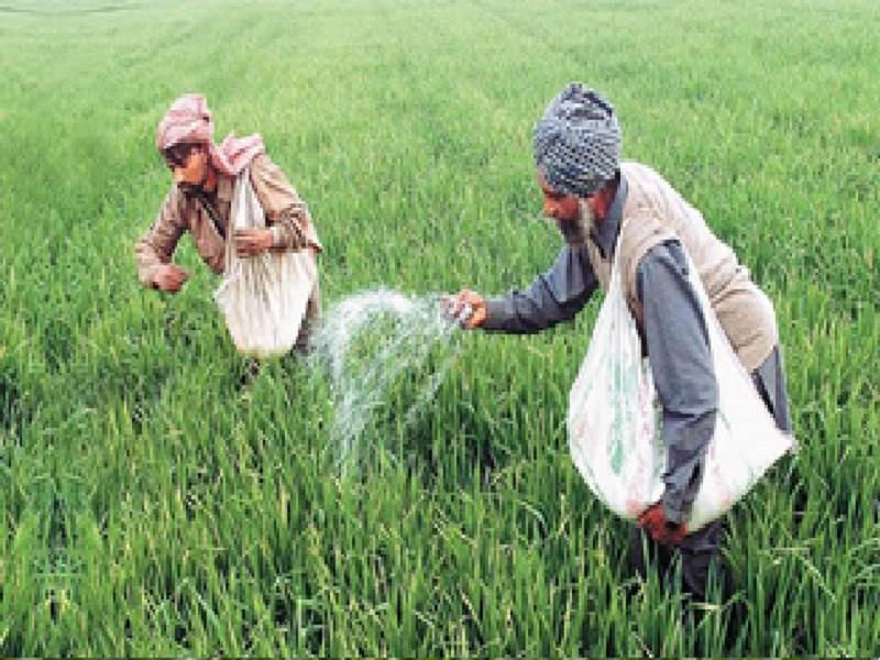 Organic-chemical farming