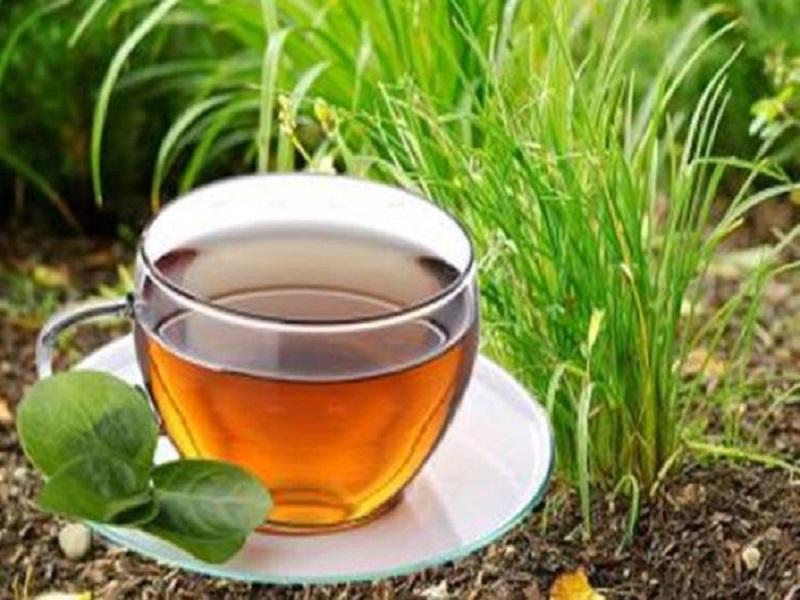आरोग्यदायी  गवती चहा