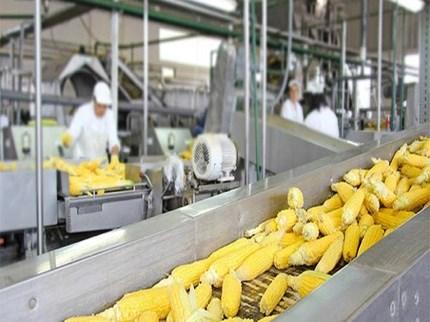 प्रधानमंत्री किसान संपदा योजनेमुळे प्रत्यक्ष अन् अप्रत्यक्ष ५ लाख नोकऱ्यांची निर्मिती